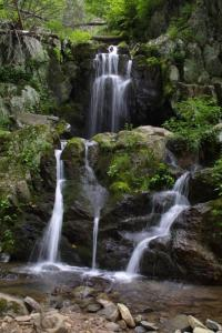 Waterfall in Shenandoah National Park. Photo in the public domain, courtesy of http://www.nps.gov/shen/photosmultimedia/photogallery.htm