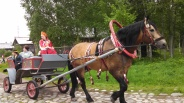 Horse and Carriage, Photo by Jacey Culross, used with permission by the Honors Program at Ferris State