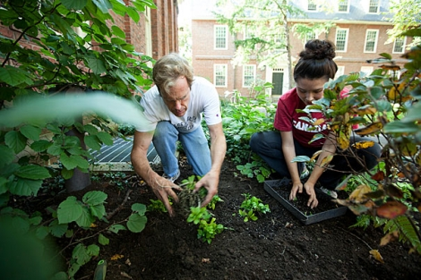 Gardening. Courtesy of the Volunteer Center at Ferris State University. https://orgsync.com/18804/news_posts/219030