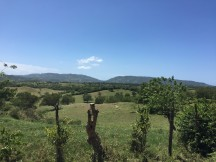 Dominican Republic landscape. Courtesy of Honors student, Cindy Tran.
