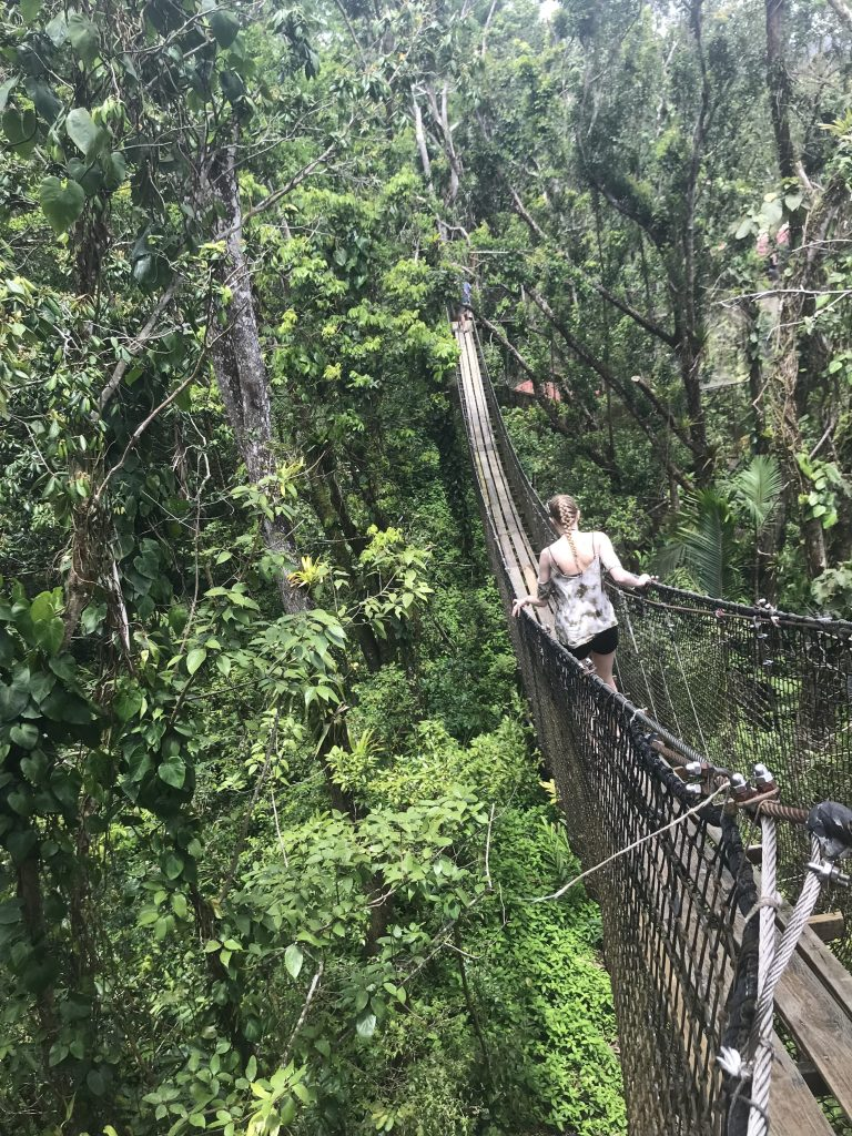 Hope Orent crossing a rope bridge. Courtesy of Honors student, Hope Orent.